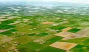 landbrug-